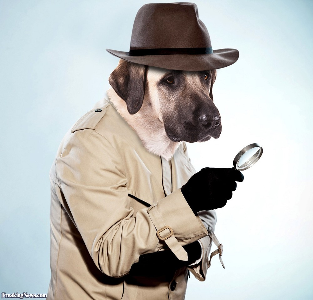 detective-dog-125703.jpg